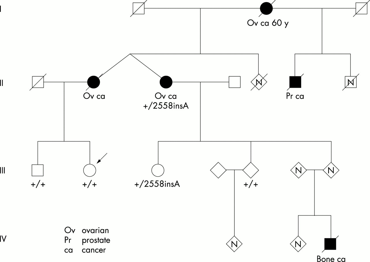 Hereditary Ovarian Cancer Resulting From A Non Ovarian Cancer Cluster Region Occr Brca2 Mutation Is The Occr Useful Clinically Journal Of Medical Genetics