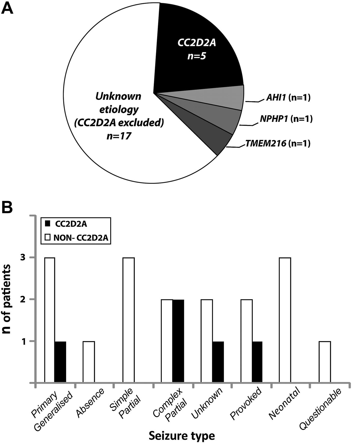 Genotype–phenotype correlation in CC2D2A Joubert syndrome