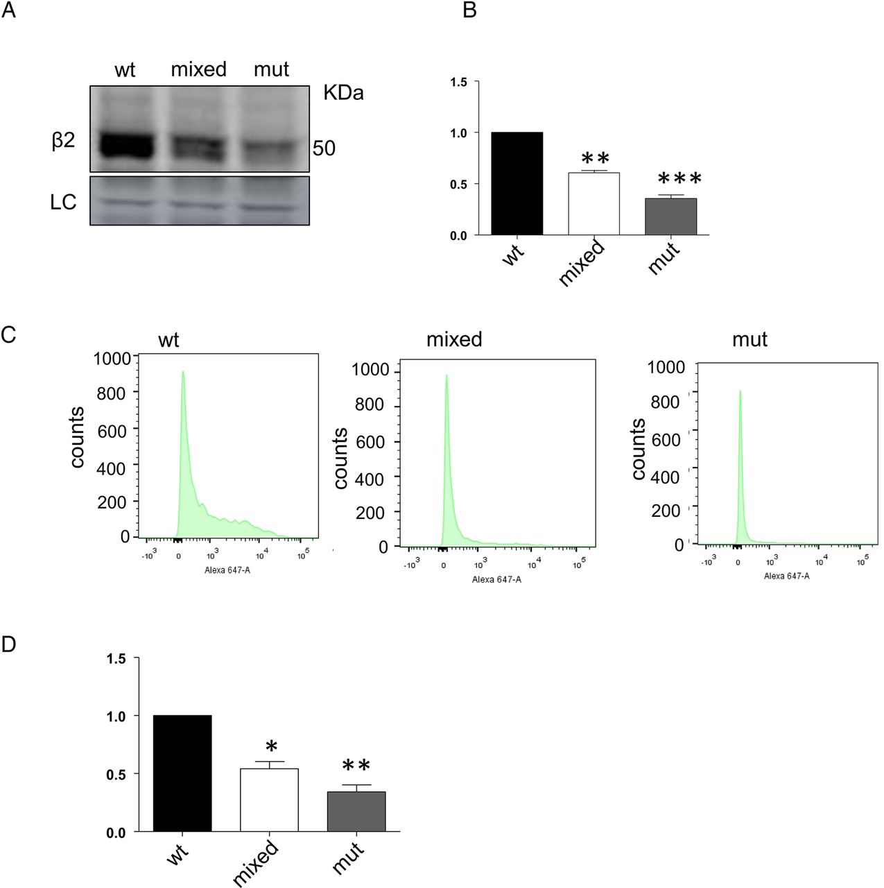 A De Novo Missense Mutation Of Gabrb2 Causes Early Myoclonic Mutant Wiring Diagram Download Figure
