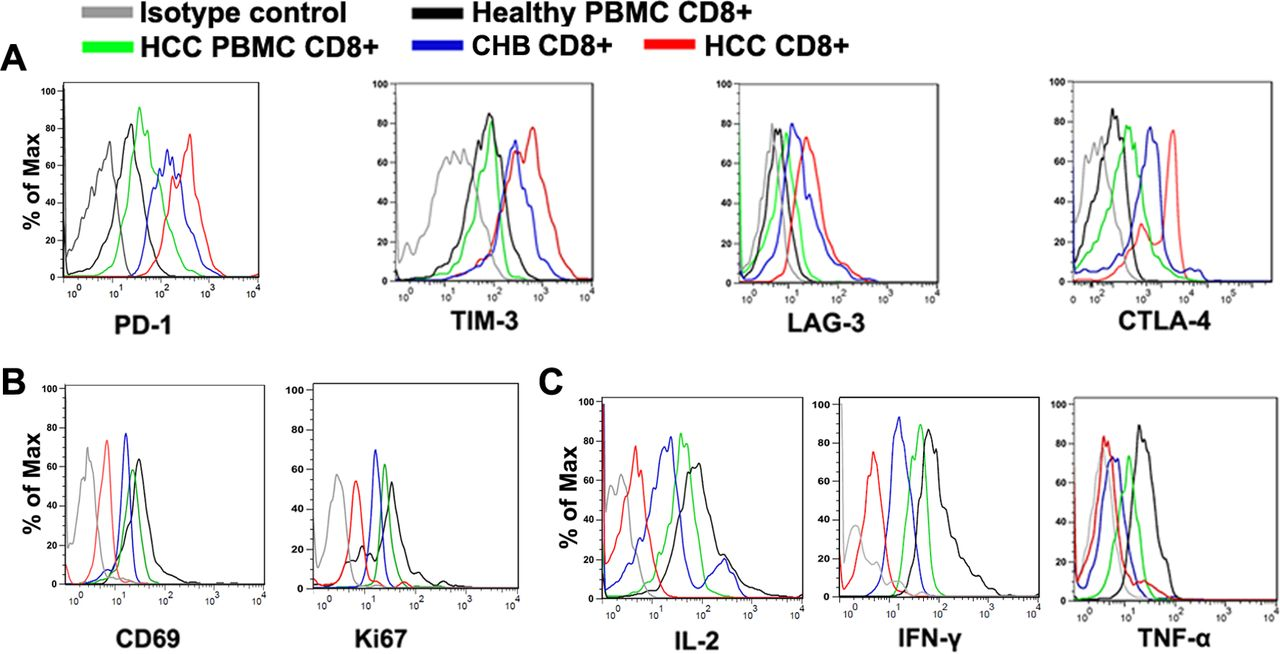 Genetic and phenotypic difference in CD8+ T cell exhaustion between