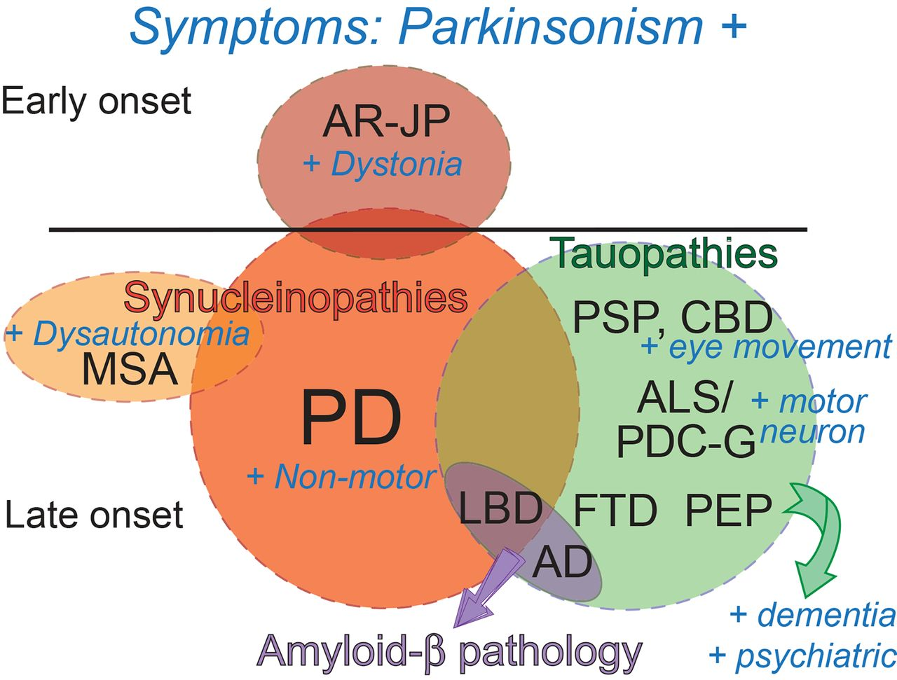Genetics of Parkinson\'s disease and related disorders | Journal of ...