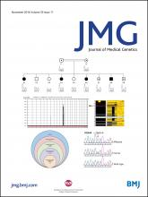 Journal of Medical Genetics: 53 (11)