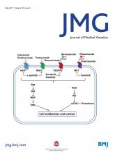 Journal of Medical Genetics: 54 (5)