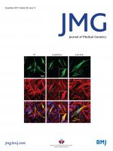 Journal of Medical Genetics: 56 (12)